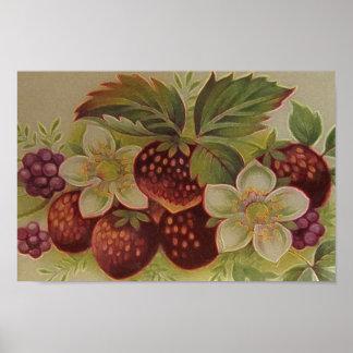 Vintage Berries Poster