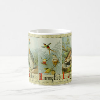 Vintage bird alphabet: Grebe, Humming Bird and Jay Coffee Mug