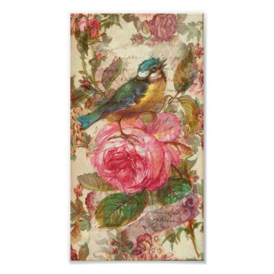 Vintage Bird and Pink Roses Poster