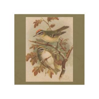 "Vintage Bird Art on 8""x8"" Wood Wall Art Wood Canvas"
