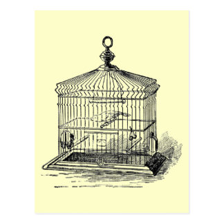 Vintage Bird Cage Post Cards