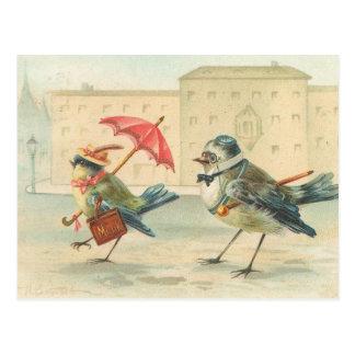 Vintage Bird Couple Postcard So Cute