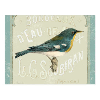 Vintage Bird Facing the Right Postcard
