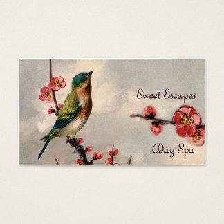 vintage bird floral cherry blossom spa pink blue business card