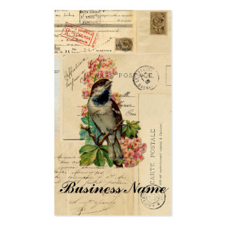Vintage Bird Flowers French Postcards Case Business Card