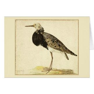 Vintage Bird Painting Greeting Card