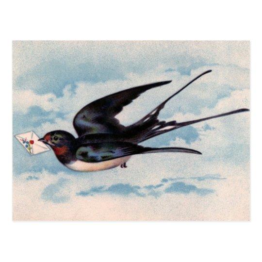 Vintage Bird Postcard