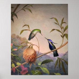 Vintage Bird Poster
