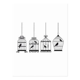 Vintage birdcages with cute birds postcards