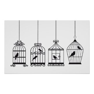 Vintage birdcages with cute birds poster