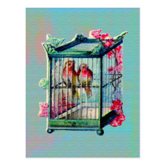 Vintage Birds and Bird Cage Post Cards