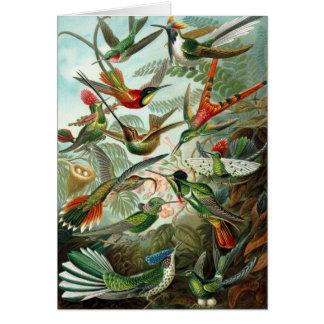 Vintage birds card