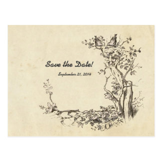 Vintage Birds Cream Save the Date Postcard