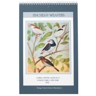Vintage Birds - Finches and Weavers 2018 Wall Calendar