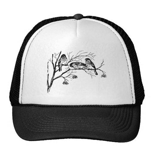 Vintage Birds Illustration Trucker Hats