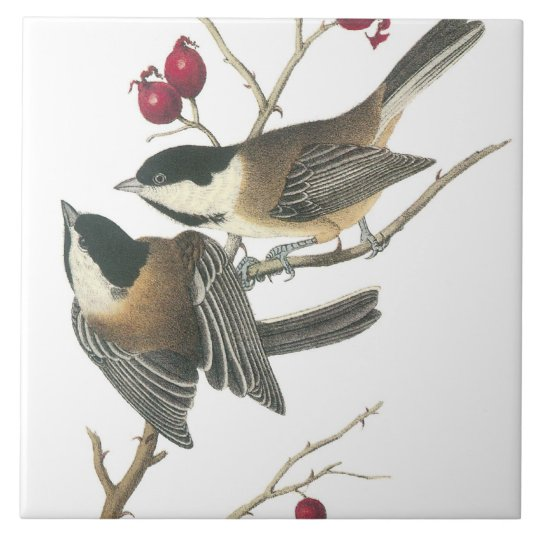 Vintage Birds Large Square Tile