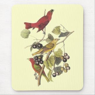 Vintage Birds On Berry Vine Mouse Pad