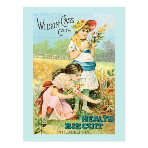 Vintage Biscuit Girls Postcard