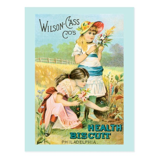 Vintage Biscuit Girls Postcard