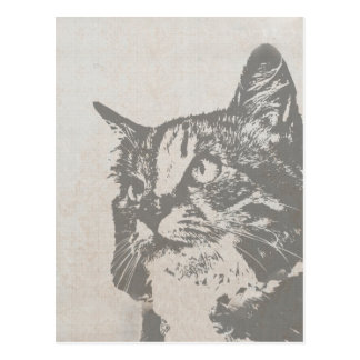 Vintage Black and White Cat Illustration Postcard