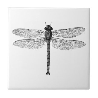 Vintage Black and White Dragonfly Illustration Tile