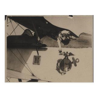 Vintage Black and White Military Bulldog Aviation Postcard