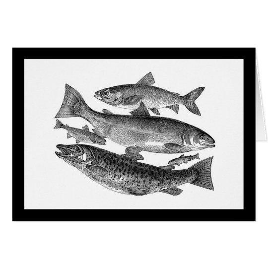 Vintage Black Fish Card