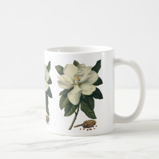 Vintage Blooming White Magnolia Blossom Flowers Coffee Mug