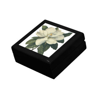 Vintage Blooming White Magnolia Blossom Flowers Gift Box