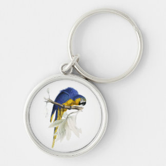 Vintage Blue And Yellow Macaw Parrot Key Ring