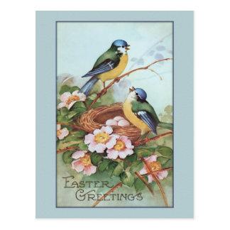 Vintage Blue Bird Easter Postcard