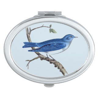 Vintage Blue Bird Oval Compact Mirror
