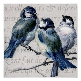 Vintage Blue Birds Collage - Customized Bluebirds Poster