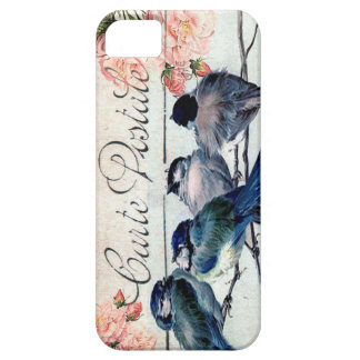 Vintage Blue Birds Roses Carte Postal Phone cover iPhone 5 Cover