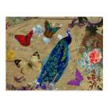 Vintage Blue Colourful Peacock Cute Butterfly Postcard