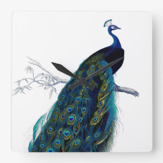 Vintage Blue Elegant Colorful Peacock Square Wall Clock