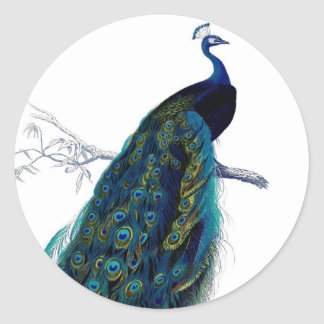 Vintage Blue Elegant Colorful Peacock Round Stickers