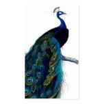 Vintage Blue Elegant Colourful Peacock