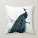 Vintage Blue Elegant Colourful Peacock Pillow