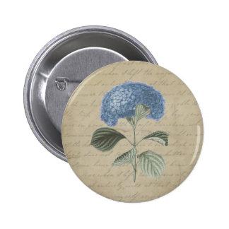 Vintage Blue Hydrangea with Antique Calligraphy 6 Cm Round Badge