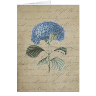 Vintage Blue Hydrangea with Antique Calligraphy Card