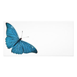 Vintage Blue Morpho Butterfly Customized Template Personalised Photo Card