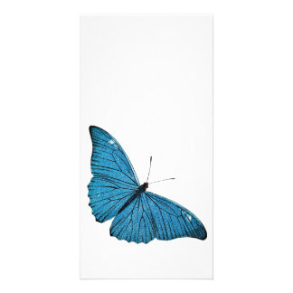 Vintage Blue Morpho Butterfly Customized Template Photo Card Template