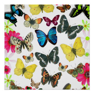 Vintage Blue Red Yellow Colourful Butterflies Posters