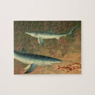 Vintage Blue Shark Eating Fish, Marine Life Jigsaw Puzzle