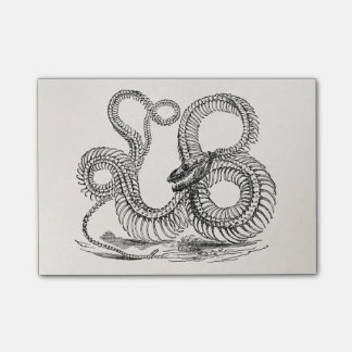 Vintage Boa Snake Skeleton Personalized Template Post-it Notes