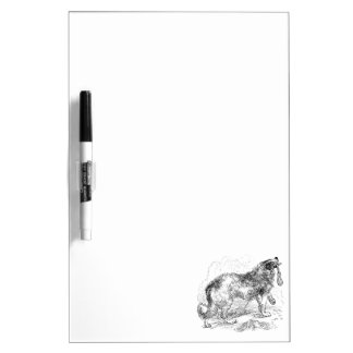Vintage Border Collie Dog Template Dry Erase Board