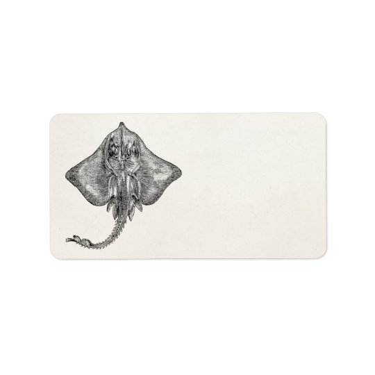 Vintage Bordered Ray Stingray - Aquatic Template Label