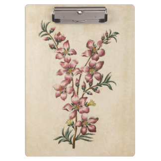 Vintage Botaical Floral Almond Blossom Clipboards