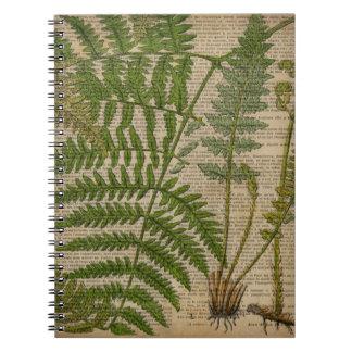 vintage botanical art newspaper Decorative ferns Spiral Note Books